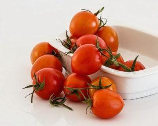 野菜の苗通販おすすめ
