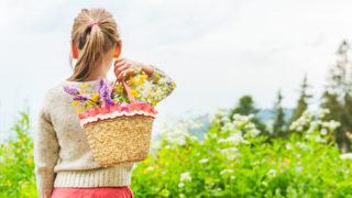 おとなが学ぶ小学校社会科日本の農業