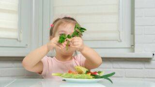 有機野菜オーガニック野菜お取り寄せ