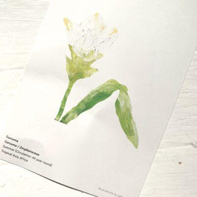 お花のサブスク